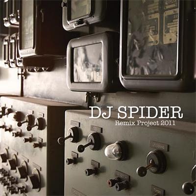 SPIDERemix project 2011