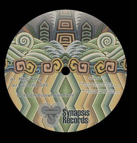 synapsis008